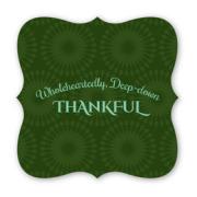 33OR-thankful